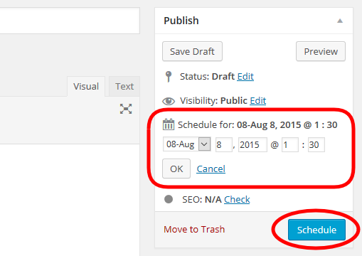 WordPress article - Schedule Publish